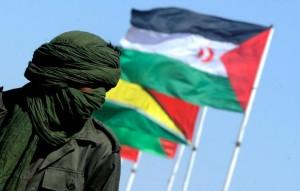 Fonte Polisario